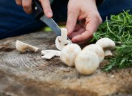 champignon-paris-potager