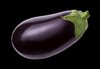 aubergine-fiche-bonduelle