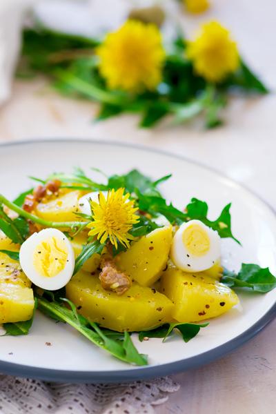 pissenlit-salade-bonduelle