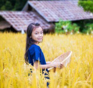 enfant-laos-champs