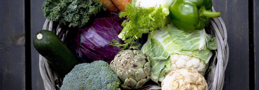 vegetables-legumes-caractere-apprécier