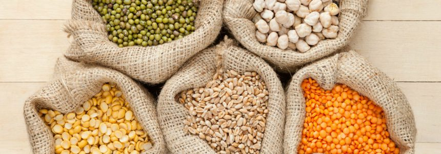 pulses-légumes secs-livre-fondation-bonduelle