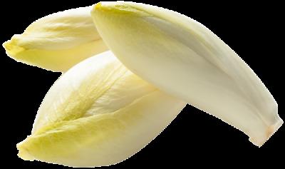 endive-legume-bonduelle