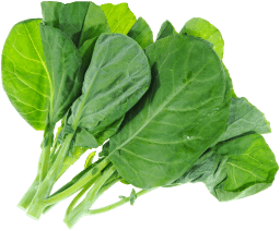 grelot-legume-bonduelle