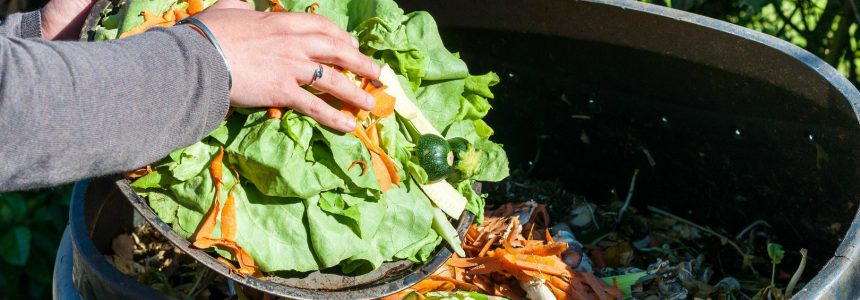 Spreco alimentare-gaspillage-alimentaire-food-waste-bonduelle
