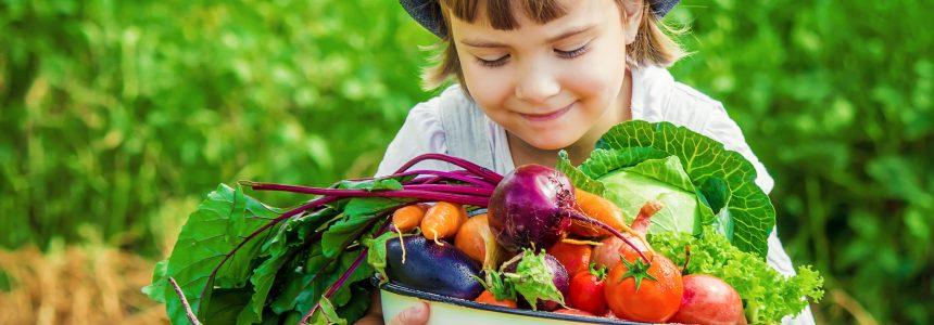 transition-alimentaire-nouvelle-génération