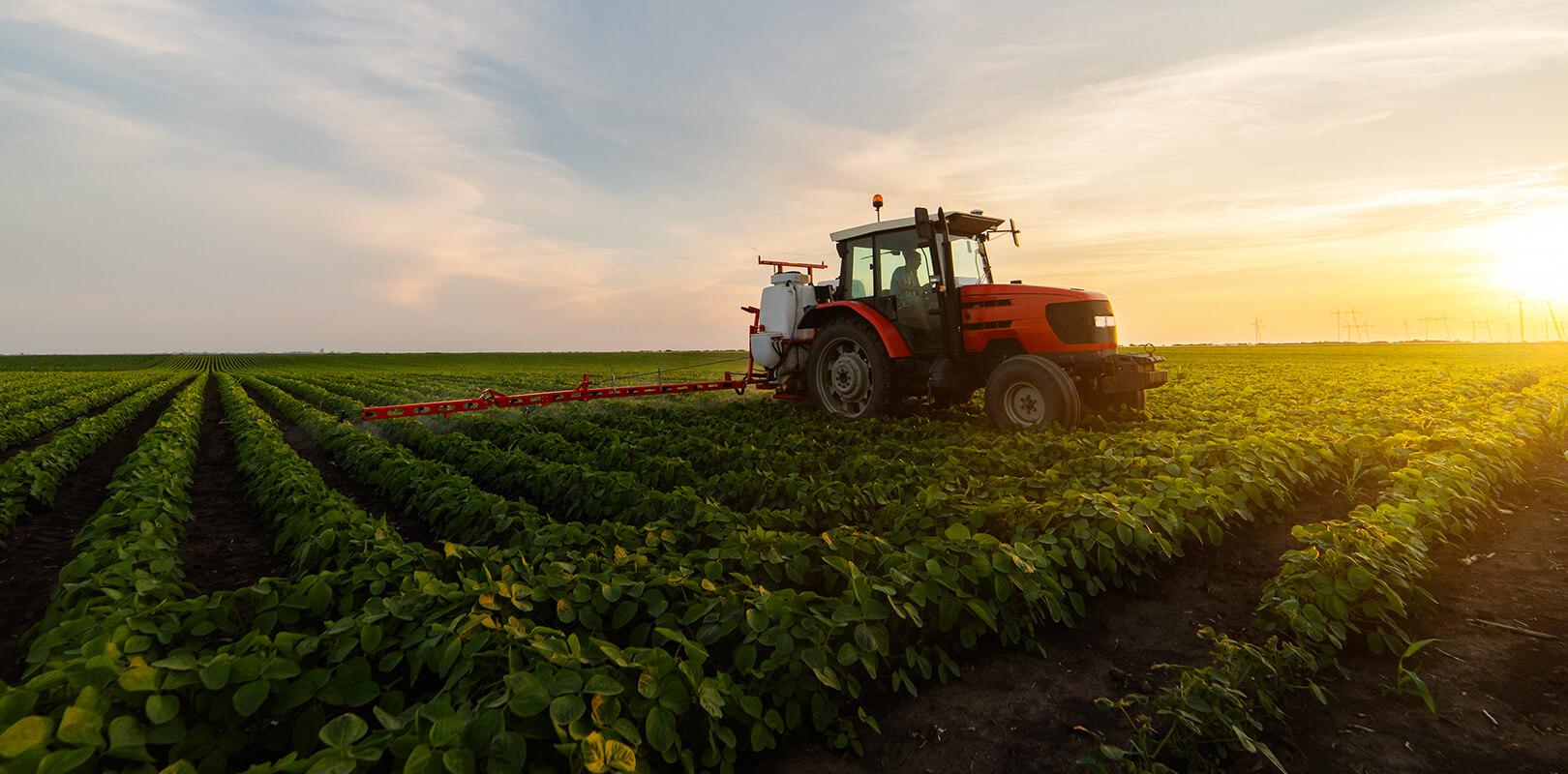 quelle-agriculture-pour-alimentation-durable