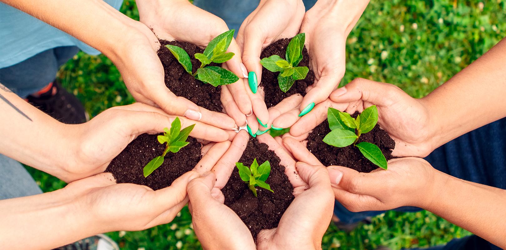 agire-per-sistemi-alimentari-sostenibili