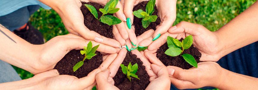 fomentar-sistemas-alimentarios-sostenibles