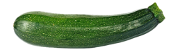 courgette-fiche-bonduelle