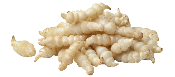 crosne-fiche-bonduelle
