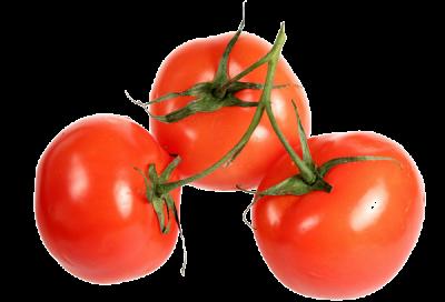 tomate-fiche-bonduelle