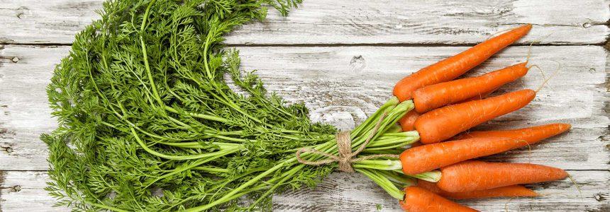 carrots-carotte-soleil-peau-beta-carotene