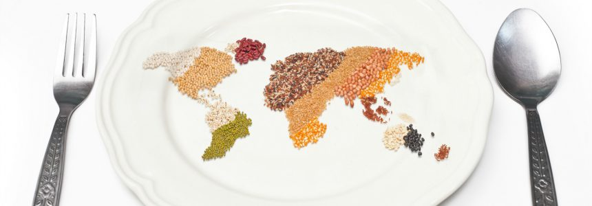 plant-based proteins-proteines-vegetales-fondation-bonduelle