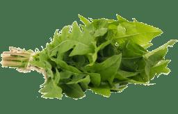 pissenlit-legume-bonduelle