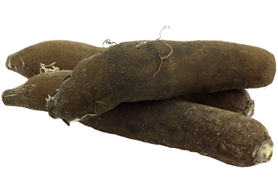radis-noir-legume-bonduelle