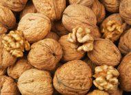 vitamine-b9-nutriments-bonduelle