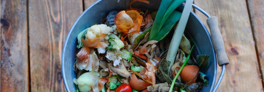 food-waste-challenges-solutions