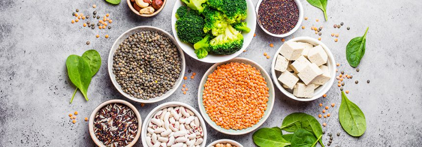 sources-alimentation-vegetarienne-equilibree